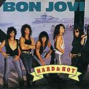 Hard & Hot (Best of Bon Jovi)