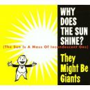Why Does the Sun Shine? (The Sun Is a Mass of Incandescent Gas)